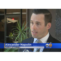 Napolin Law Firm Image