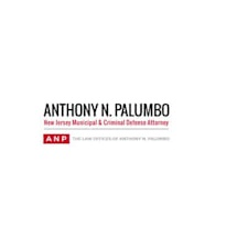 The Law Offices of Anthony N. Palumbo Image